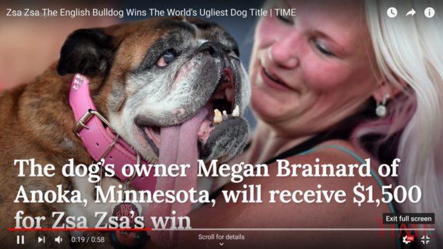 Zsa Zsa the Ugliest Dog