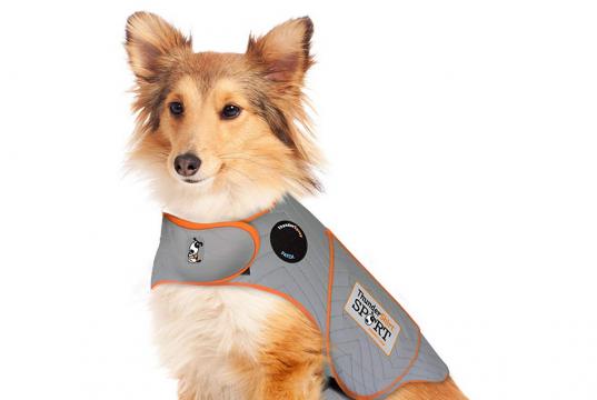 Thundershirt Sport Dog Anxiety Jacket Review